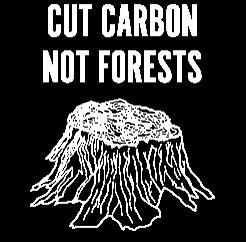 ccnf logo reversed v1